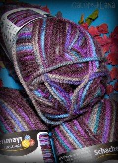 Lana Bravo Color Schachenmayr SMC 02086