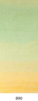 890 cartella colore